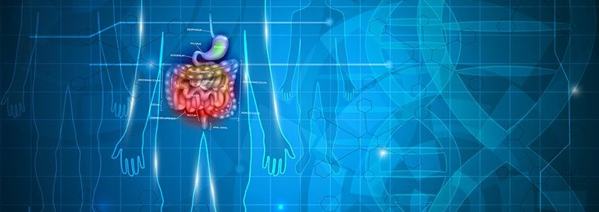 IRRITABLE BOWEL SYNDROME AND CBD; NEW CLINICAL TRIALS