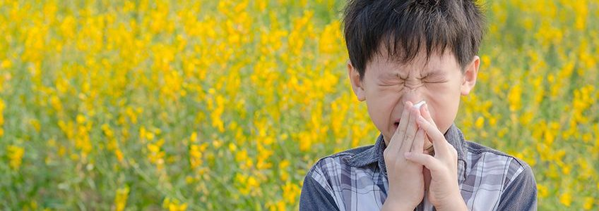 IS CBD A TREATMENT FOR FALL ALLERGIES?